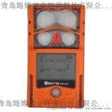 美国英思科Ventis Pro多气体检测仪原装