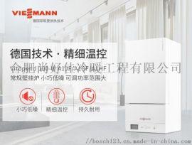 合肥菲斯曼A1JF18国产合资燃气采暖炉