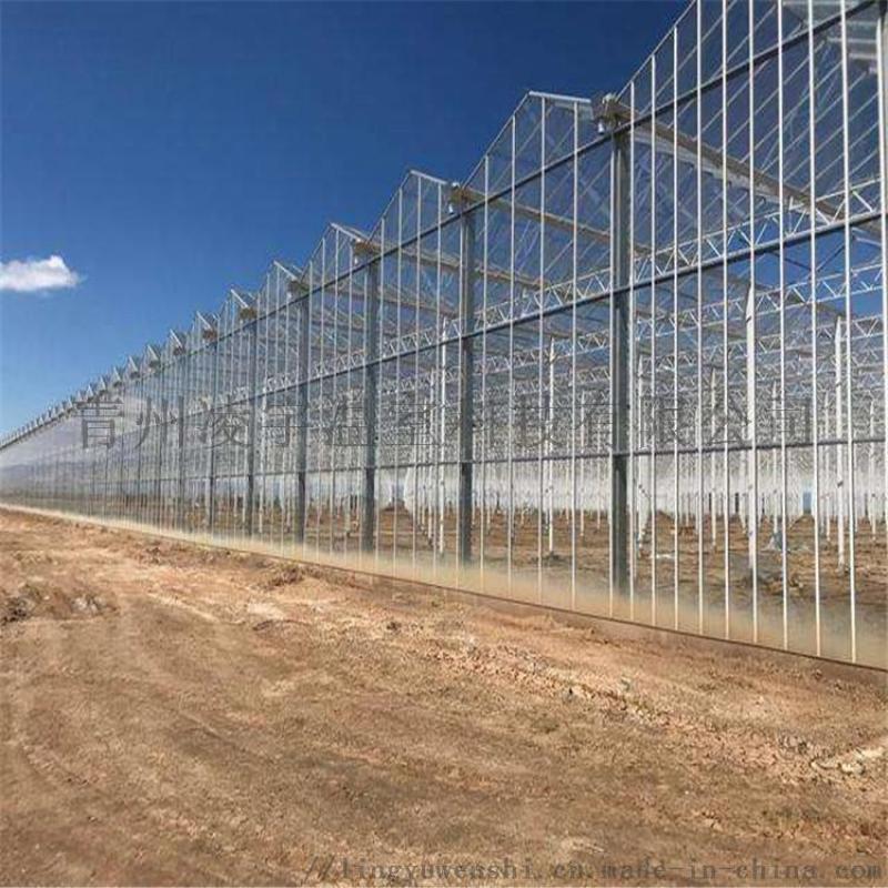 現代化玻璃溫室建設溫室大棚設計工程