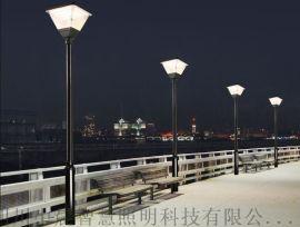 四川成都 小区庭院景观灯 防水道路灯