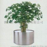 不锈钢花盆,商场摆设花盆,大堂花盆,专业生产