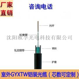GYXTW光缆 欧孚室外单铠装光缆2-12芯