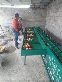 油桃分选机 小型桃子选果机 油桃自动分大小
