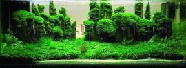 深圳亚克力鱼缸造景、长期销售