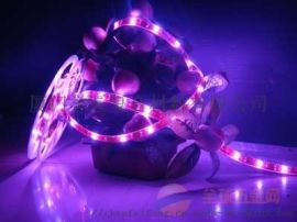 厦门透明水晶PU胶LED防水灯条胶