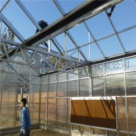 阳光板温室承建 阳光板温室工程