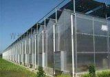 冬季保温阳光板温室阳光板玻璃温室建设工程项目
