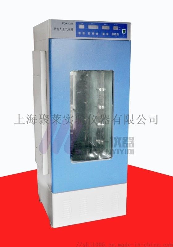 重庆智能霉菌培养箱MJX-80细菌培养箱