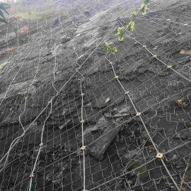 高速护坡钢丝网 gps2主动防护网