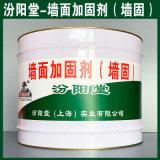 墙面加固剂(墙固)、生产销售、墙面加固剂(墙固)