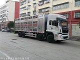 6.8米运猪车带消毒运活猪箱式车厂家直销可分期