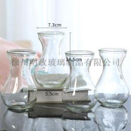玻璃花瓶透明摆件瓶水培瓶绿萝瓶富贵竹瓶装饰瓶干花瓶
