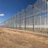 專業承建溫室玻璃大棚溫室骨架