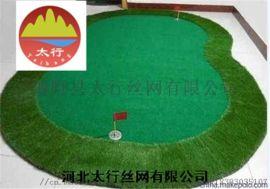深圳假草皮庭院草坪 人工塑料草价格