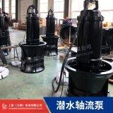 四川QZ潜水轴流泵厂家 大流量轴流泵