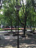 成都廠家供應 鍍鋅板材質庭院燈 小區公園高杆燈