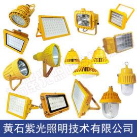 紫光GB8040_GB8040LED防爆泛光灯报价
