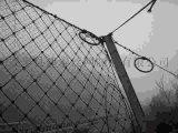 主动防护网图片 安装柔性防护网