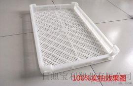 塑料单冻盘冷冻盘肉串盘卡通包盘食品级托盘