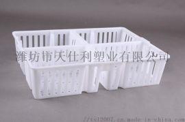 鸡苗箱**运输箱塑料周转箱小鸡鸭十字格周转箱