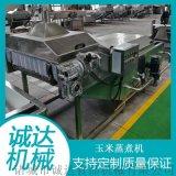 玉米蒸煮加工機,速凍玉米加工機,玉米深加工設備