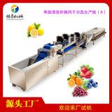 果蔬清洗風乾分選生產線(A)