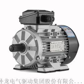 WOLONG卧龙IE3系列高效三相异步卧龙电机