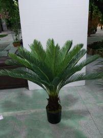 仿真苏铁 天津热带植物铁树 厂家直销仿真树 仿真植物 假树装饰