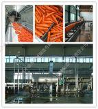 胡萝卜汁生产线成套设备