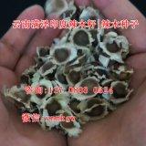 广东哪里卖辣木籽/湛江阳江辣木籽订购