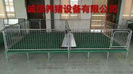 厂家小猪保育床使用好处养猪场设备仔猪保育床标准尺寸科学养殖机械直销