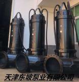 提供大口徑排污泵 潛水排污泵 軸流泵