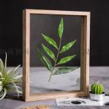 木質標本框 河南智科標本框 植物標本框
