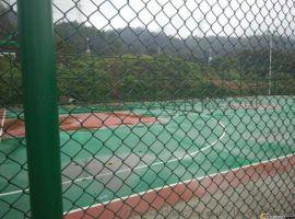 东兴体育围网-种植养殖隔离网厂家