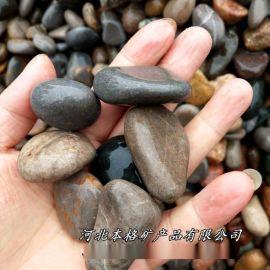 本格供应天然鹅卵石 路面用鹅卵石 抛光鹅卵石