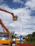 300W風光互補路燈系統