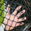 供应勾花网 镀锌勾花网 包塑勾花网 勾花网护栏网