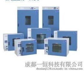 成都供应DHG大型电热恒温鼓风干燥箱 资中食品电热鼓风烘箱价格