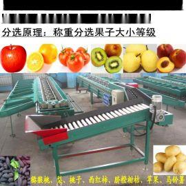 全自动桃子油桃分选机苹果梨选果机