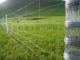 烏海廠家現貨批發草原網 內蒙古草原牛欄網 農場 牧場圍欄網