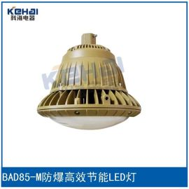 科海供应防爆高效节能LED灯BAD85-M