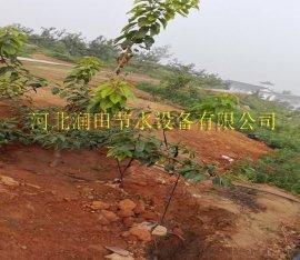 五台县桃树节水灌溉设备 忻州市果树小管出流价格