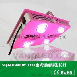 600W全光谱可定制光谱LED植物生长补光灯