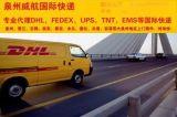 晋江dhl国际快递公司|dhl快递电话