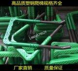 合肥塑钢爬梯150*280,塑钢爬梯生产厂家巨牛检查井塑钢爬梯