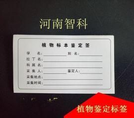 植物鑑定標籤  植物標本採集標籤  河南智科