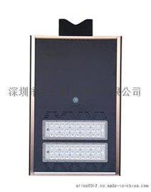 若日牌金刚730太阳能人体感应灯6米30W湖南新农村建设专用道路照明