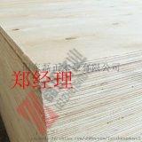包装箱板免熏蒸多层板一次成型不开胶山东磊正木业