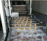 玉米清洗漂燙風乾機  玉米加工設備