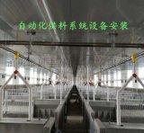 猪场设计安装全自动化上料系统设备沧州厂家